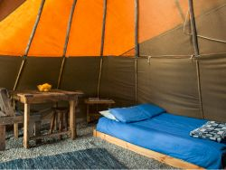 Paws TiPi interior