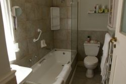 Bathroom en suite: Room 1  Bath & overhead shower