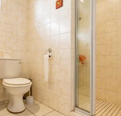 Only a shower, toilet and wash basin for this twin room