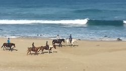 Horses on the beach in front of the house
