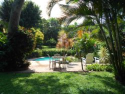 Relax and unwind in this peaceful garden, have breakfast on the poolside patio