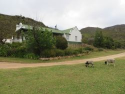 Gemsbok - Cottage 2