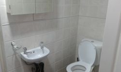 Ground floor main en suit bathroom has shower, basin and toilet