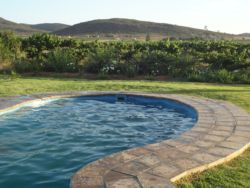 Swimming Pool in the Vineyards