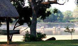 Camping on the banks of the Luangwa River