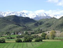 Snow on the Swartberg mountains in winter (as seen from De Kombuys)