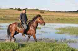 Horse riding, clay pigeon shooting, .22 shooting, hiking trails, star gazing, swimming pool.
