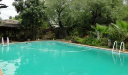 The 15 x 7 m pool