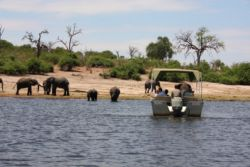 Morning boat cruise on the Chobe