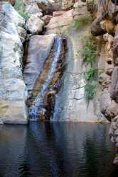 EL YOLO OnE Waterfall