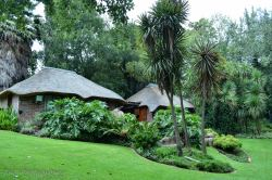 Hippo and Crocodile Rooms - overlooking the Koi pond and river