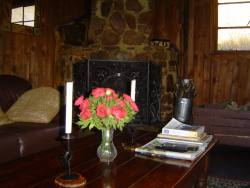 Forest cottage self catering