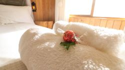 The queen sized bed is fitted with luxury linen and we provide fresh towels and a small treat to enjoy on arrival.