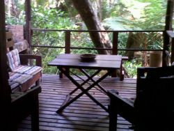 Tree House deck and braai