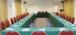Tulip Conference Room - up to 70 pax