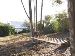 There's a hammock and swing in the gums, and an outdoor shower and bath!