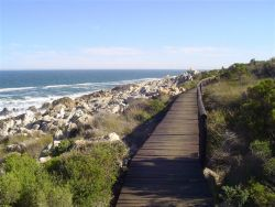 The Kleinmond Seafront Walk - which passes directly in front of Herd's Cove.
