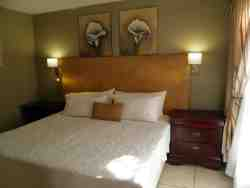 Luxury suite Room 2