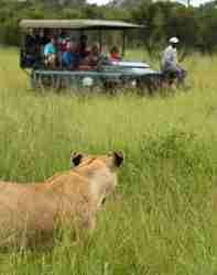 Khoka Moya Game drive vehicle