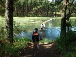 Mountain Bike crossing over the dam at Ingeli Forest Resort