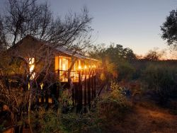 Kapama Buffalo Camp Tents