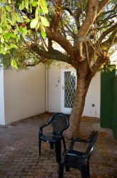 Enjoy the birdlife and privacy under the leafy trees on your own private patio
