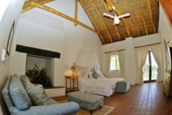 Thatched Twin Room