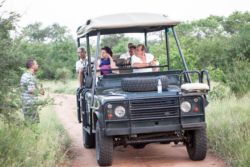 The game drive vehicle