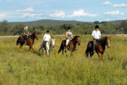 Horse Back Safaris
