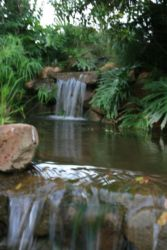 A water feature in the beautifully landscaped garden.