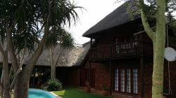 Thatched lodge with high ceilings