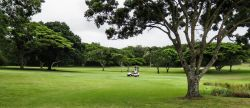 Selborne Park Golf Course