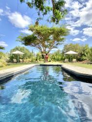 One of the two swimming pools - for our in-house guests to enjoy