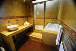 Room 3: Luxury bathroom with spacious shower and bath.