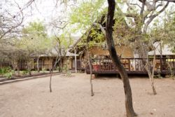 Lodge from the bush