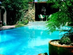 No 8 Guest House Pool