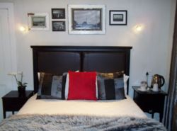 Executive Room - One Night in Joburg