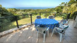Balcony with view unto the ocean,sardine run,garden, blue duiker , Vervet Monkeys
