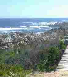 Kleinmond hiking trail