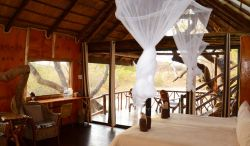 Marula Tree House