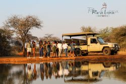 Discover the beauty of the Bushveld with our 2-hour interactive Game Drive at Re a Lora Lodge