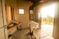 Safari Room & Safari Family Room Shower