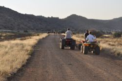 Game viewing with quad bikes.