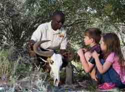 We are a family friendly environment and activities for kids can be booked in advance. Ranger entertaining kids.
