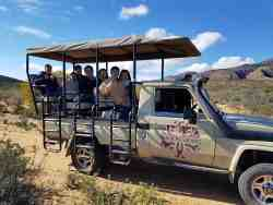 Game drives are included in the price and one of our favourite activities.