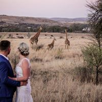 Photo opportunities with a difference.  From Giraffe to Buffalo, Eiland, Sable