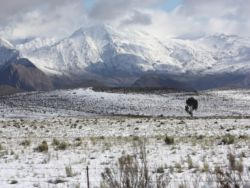 Koo Valley-  a lot of snow fell in June 2011...it's just 30 km from MONTAGU