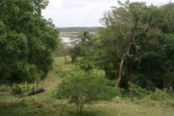Gardens bordering bush and overlooking Lake St Lucia