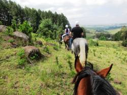 Horse trails can be booked with us at Stormy Hill Horse Trails