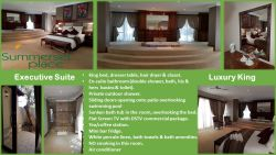 Executive Suite - Luxury King